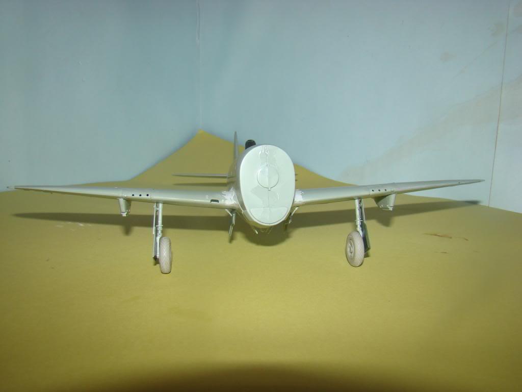 P-47 Eduard 1/48 DSC04191_zpsb58f17e0