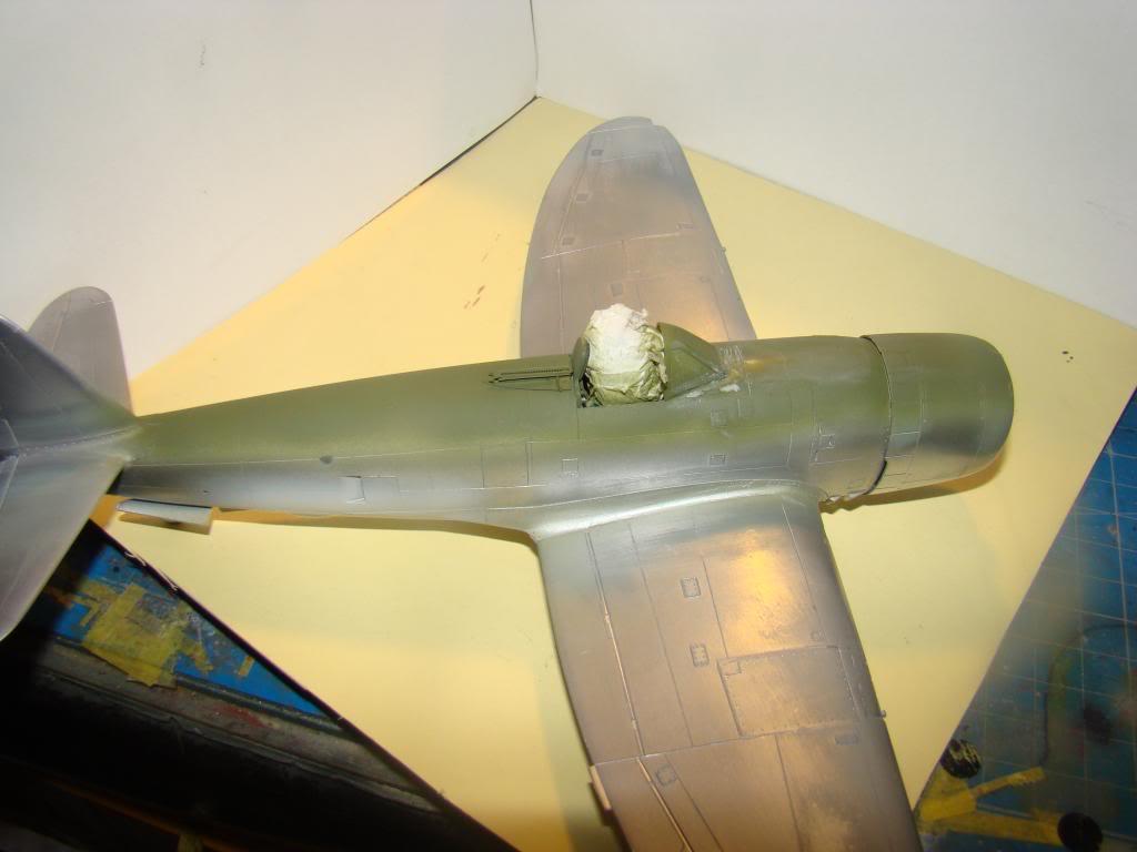 P-47 Eduard 1/48 DSC04407_zps3f4f06aa
