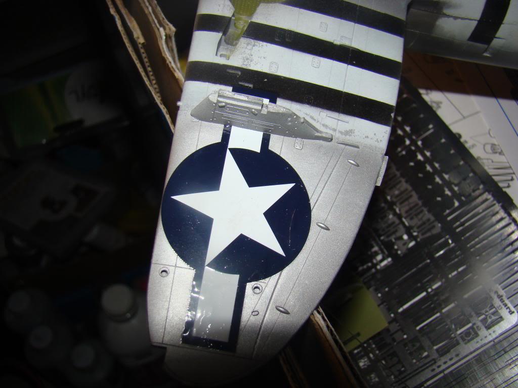 P-47 Eduard 1/48 DSC04542_zps8d134f48