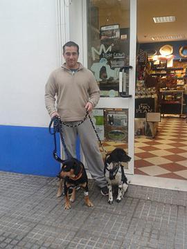 Canis - Paquito  681f8f_6503482fc4f6422096c870cca7750e12jpg_srz_p_270_360_75_22_050_120_000_jpg_srz_zps70c0cc3b