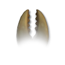 Spore Resurrection SR_ce_cell_mouth_jaw_02_zpsfcc90ee9