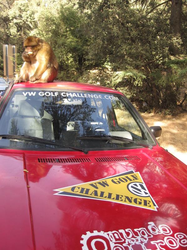 "Golf Challenge Maroc 2012 (Raid "" low cost"" pour m IMG_4811"