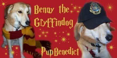 MessrMoony's Avatars and Signatures Bennygryffindog