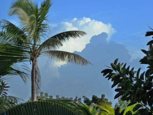 Pics of our trip to Cuba... 021
