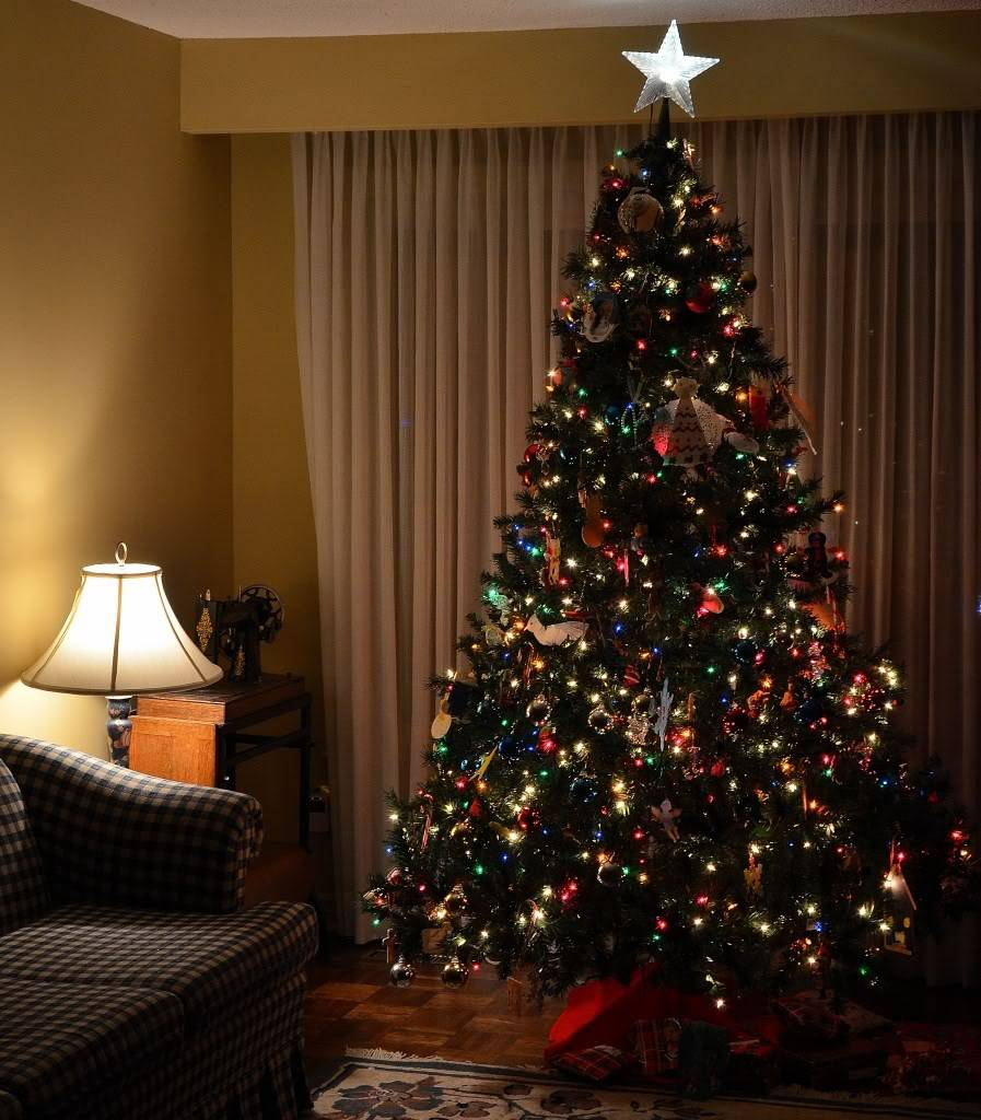 Merry Christmas 2011 DSC_6476
