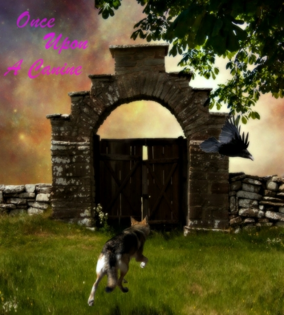 Once Upon a Canine 5be1a11d-6022-46da-98f6-46653dbe252b_zps1322bce8