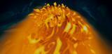[Gintama FC][Character][Enchanted] Nữ hoàng Narissa Th_Narissa_3_zpse6818bf2
