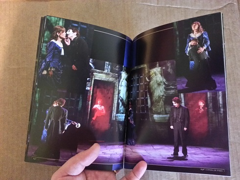 """Phantom: The Untold Story"" -- Susan Kay stage play in Japan 16_Erik_Christine_Avenir_sized_zps806033bf"