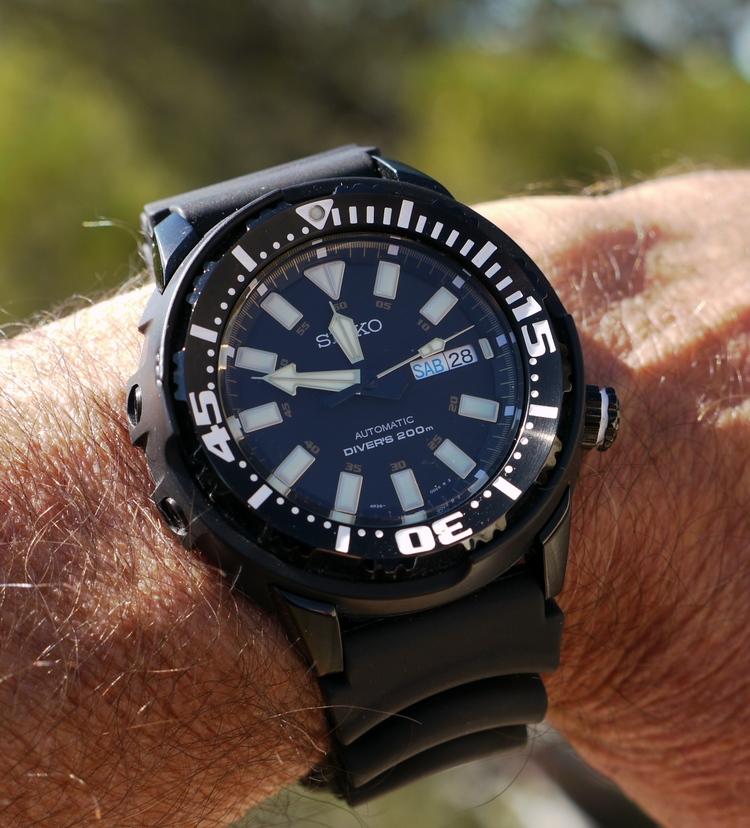 "Divers ""lata de atún"" P1100574_zps41b957de"