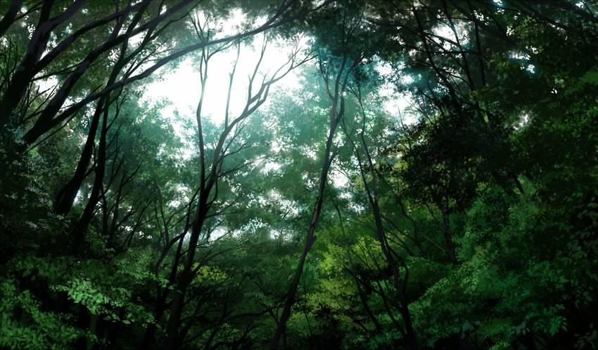 Ba-Zhen-Tu Forest_zpspya7stnl