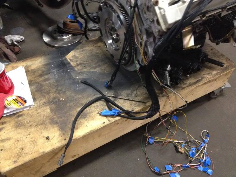 Just spit on it Coilharness1-