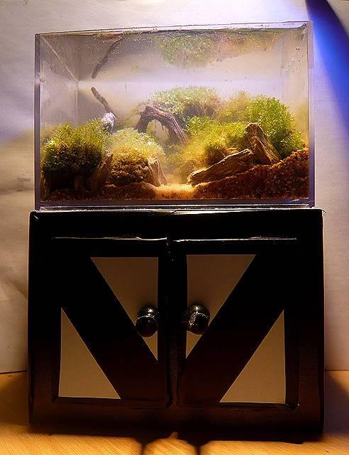Les Miniaquariums De Barqueros Untitled-27