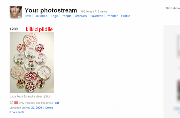 Kuidas kasutada flickr-i. ScreenShot136