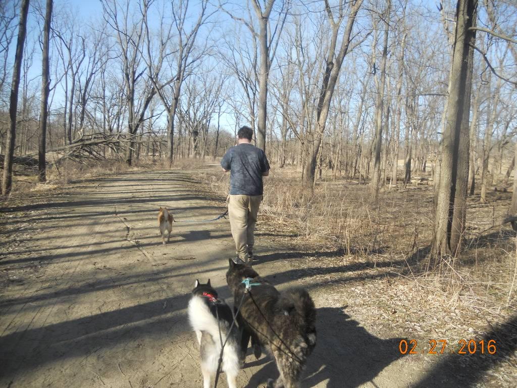2016 hiking DSCN3407_zpsg8avgkxr