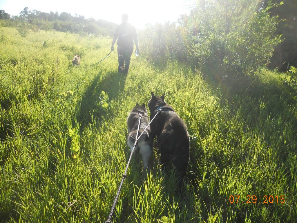 Hiking trips DSCN2786_zpsacwghtjt