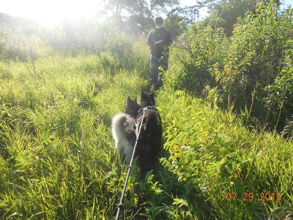 Hiking trips DSCN2790_zpsuavpeat1