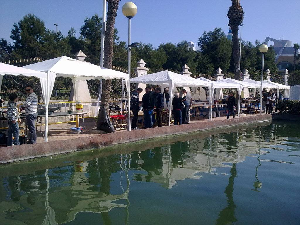 IX Exhibición naval Torrevieja (2012) IX%20Exhibicin%20torrevieja%209_zpsfyz3xgjv