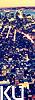 Karlen University {Afilacion Elite} - {Confirmacion} Boton35x100-2_zpsfdc77b52