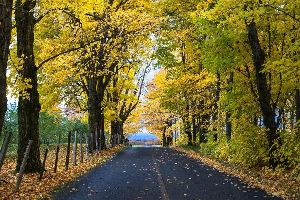 Paysage d'automne à l'Île d'Orléans Mitan%2058_zpsmkoni1dq