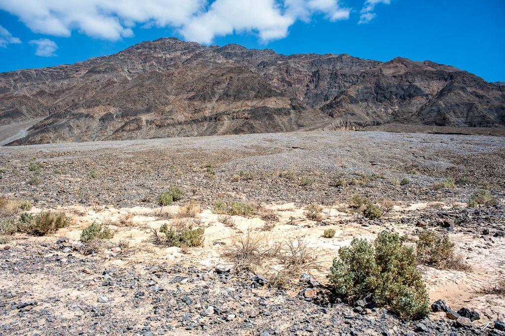 Death Valley (partie 2) DV2017-13_zpsbut8zxdh