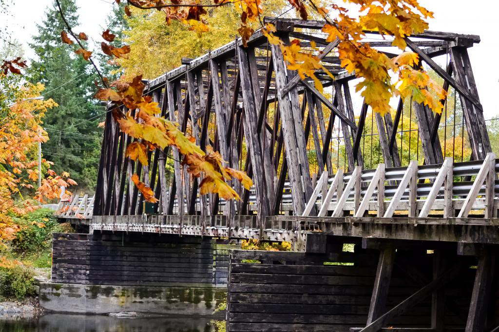 Pont de bois Pontbois_zps3c18f9e1