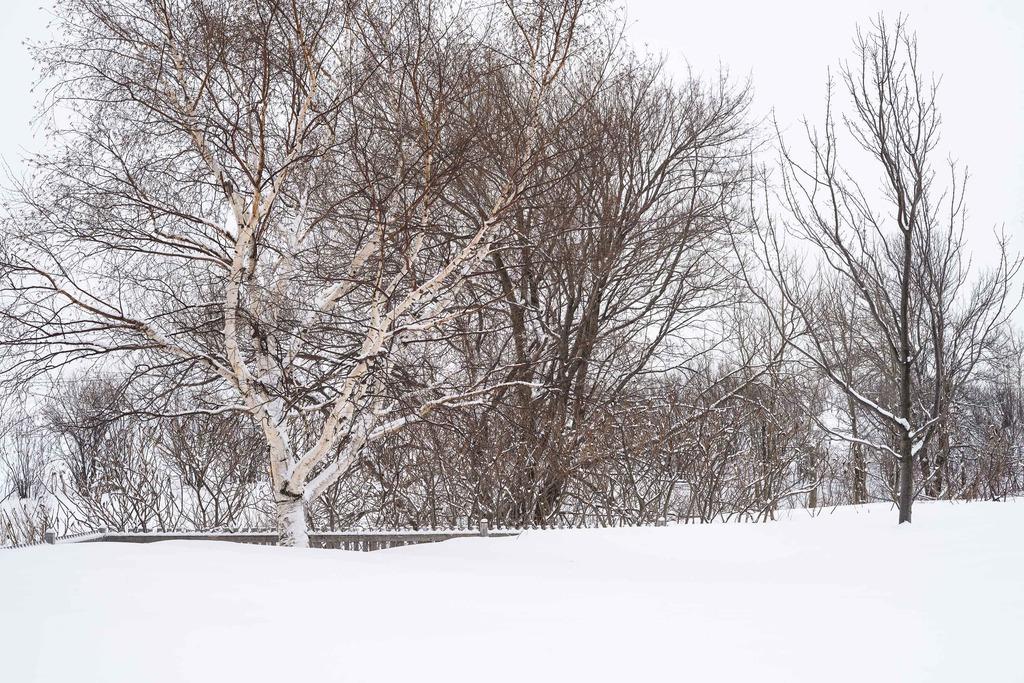 Petite neige... Maison%2079_zpsxwbzucx6