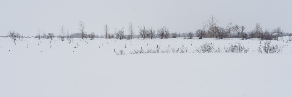 Petite neige... Maison%2081_zps9sjz4lbs