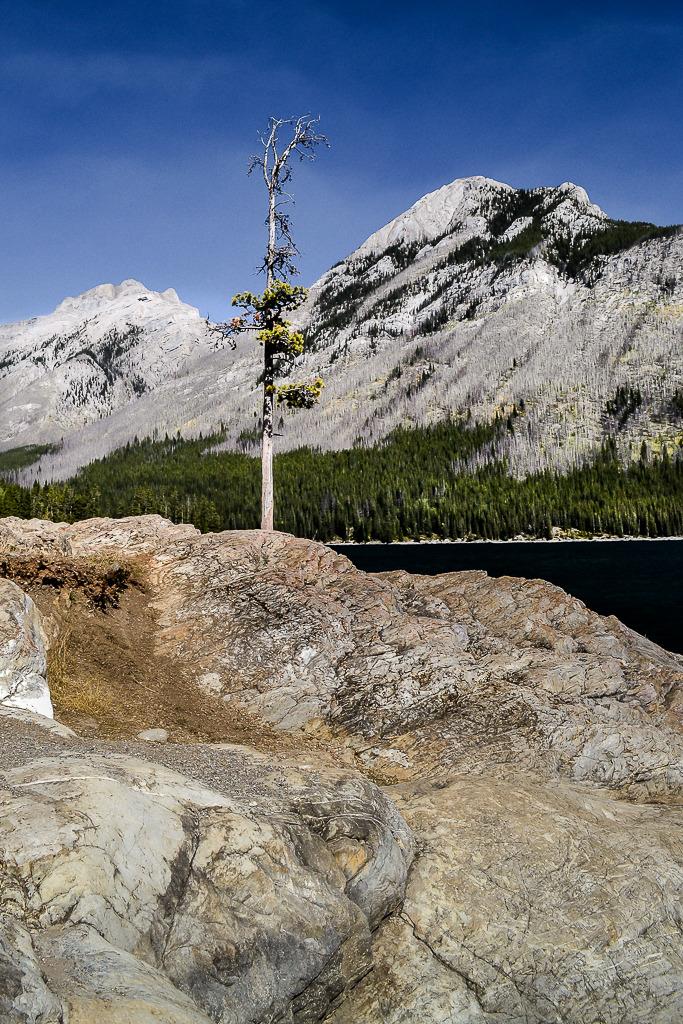 Lac Minnewanka (ajout et fin) Banff%204_zpswdfhvxgi