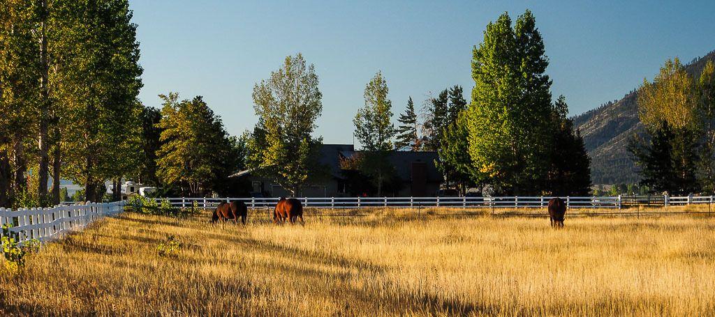 Ranch Californie%207_zpsv87p6joh