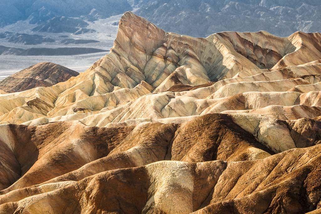 Aridité (partie 2) Desert%2021_zpspmldhqx1