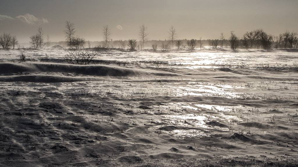Contre-jour glacé Ile%20163_zpspfhec1pl