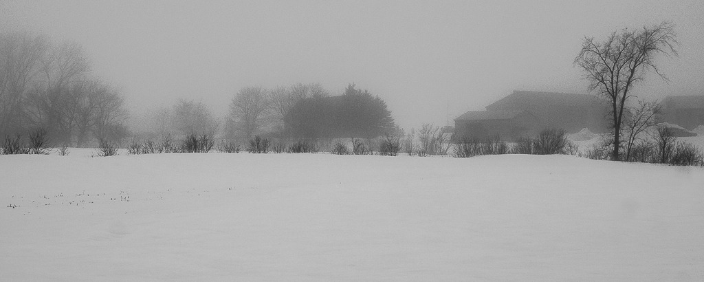 Brouillard Ile%202016%2043_zpsdvwuprth