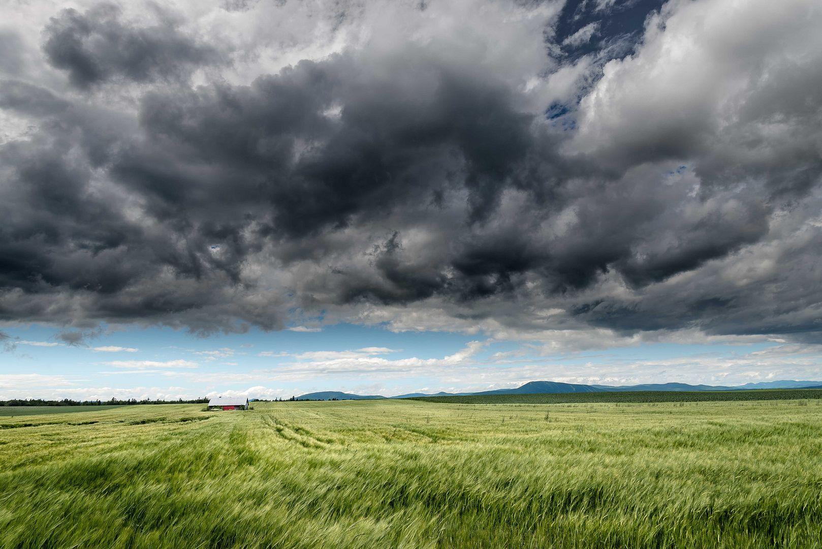 L'orage Ile%20divers%208a_zps01up6cey