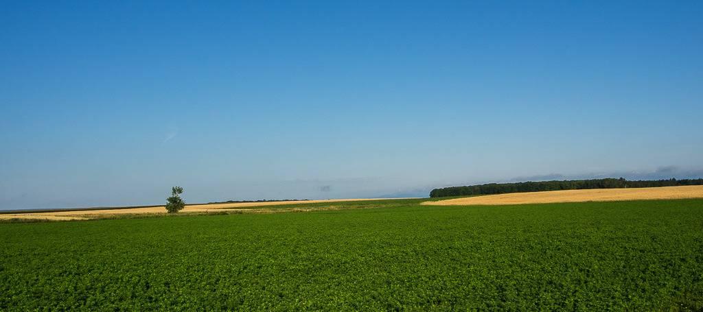 La terre nourricière... Ile%20aout%202015%203_zpsi2qudn2h