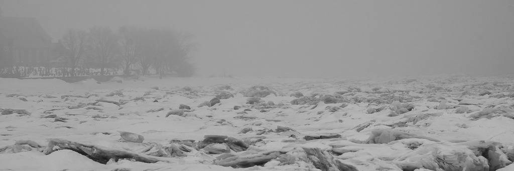 Brouillard Ile%20divers%2088_zpspvvjhbho