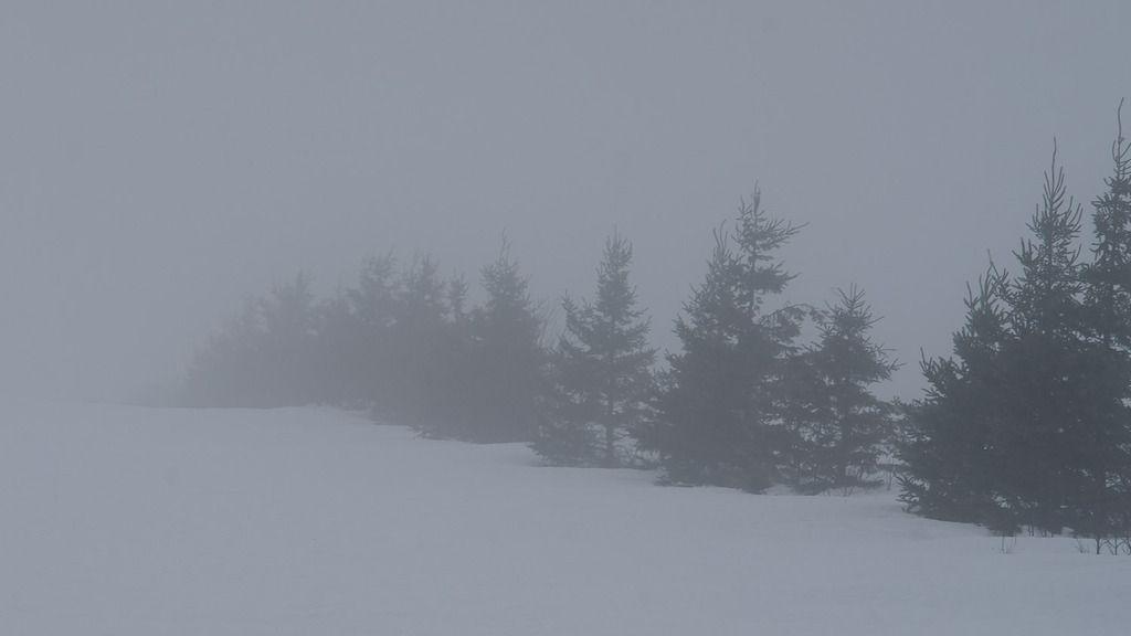 Brouillard Ile%20divers%2089_zpsbi6czweo