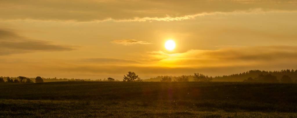 Quelques soleils... Ile310_zps989163cf