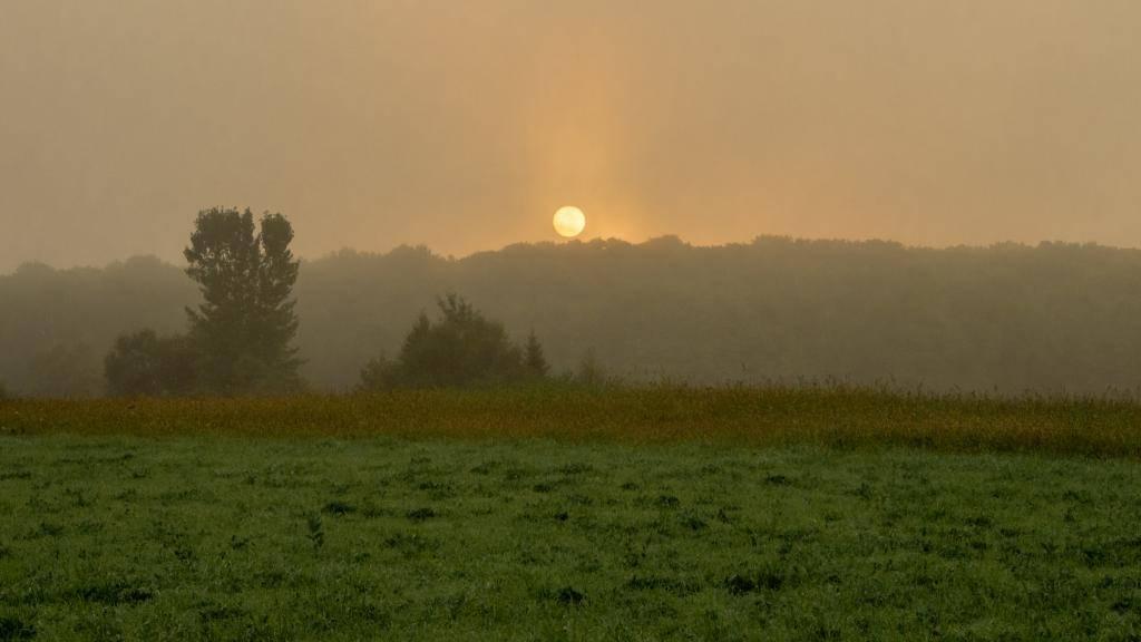Quelques soleils... Ile313_zpse8f1a638