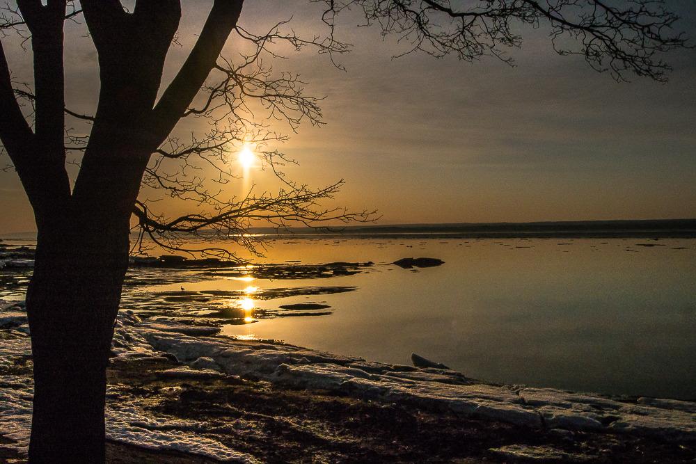 Quelques soleils... Soleil%201_zpsb8yjifup