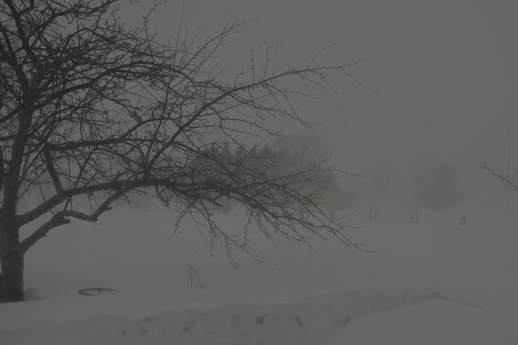 Le blizzard... Ile%2086_zpsmc62up6w