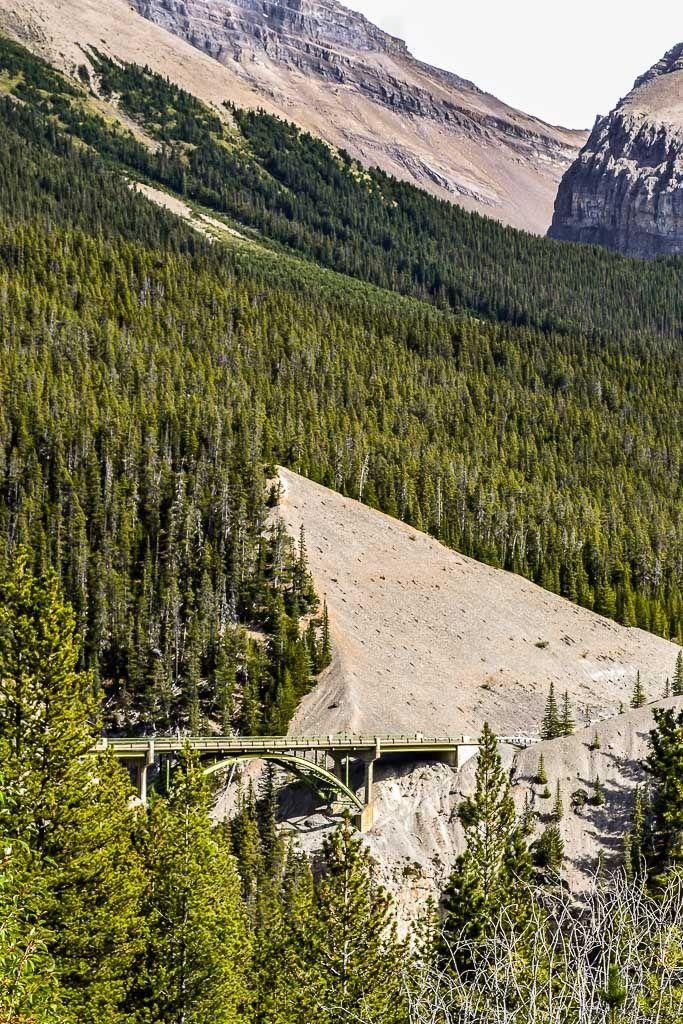 Promenade des glaciers Jasper%2031_zpsumyxm1ku