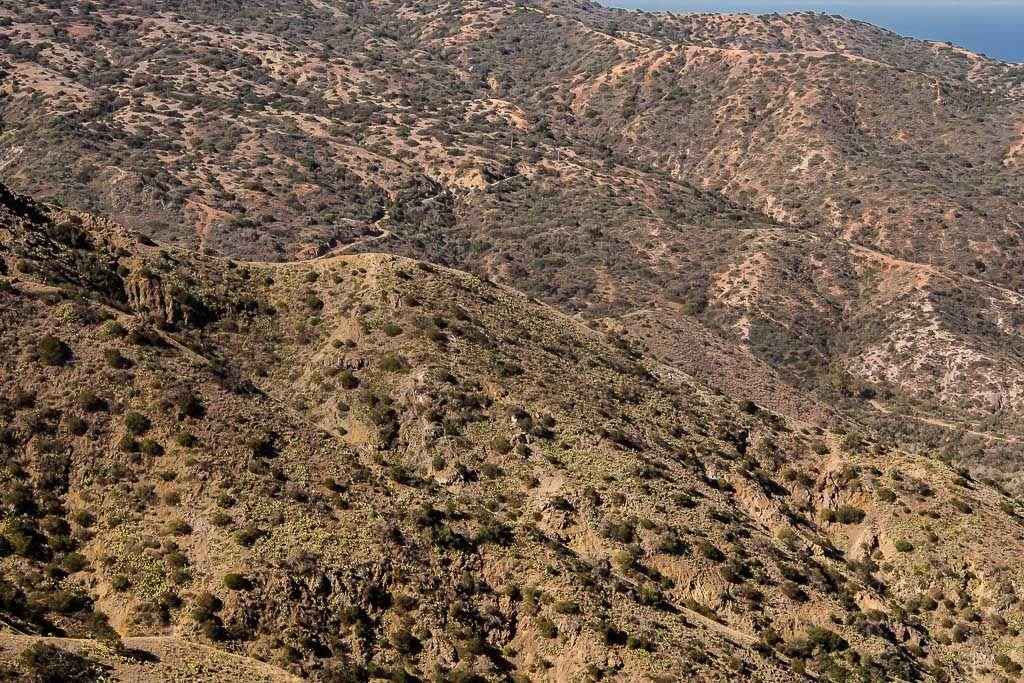 Quelques paysages de l'île de Catalina Long%20Beach%2031_zpsnjzj4aqm