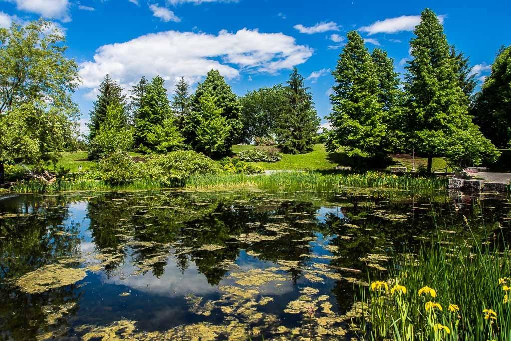 L'étang... Maizeret%202_zpsymzazzgq