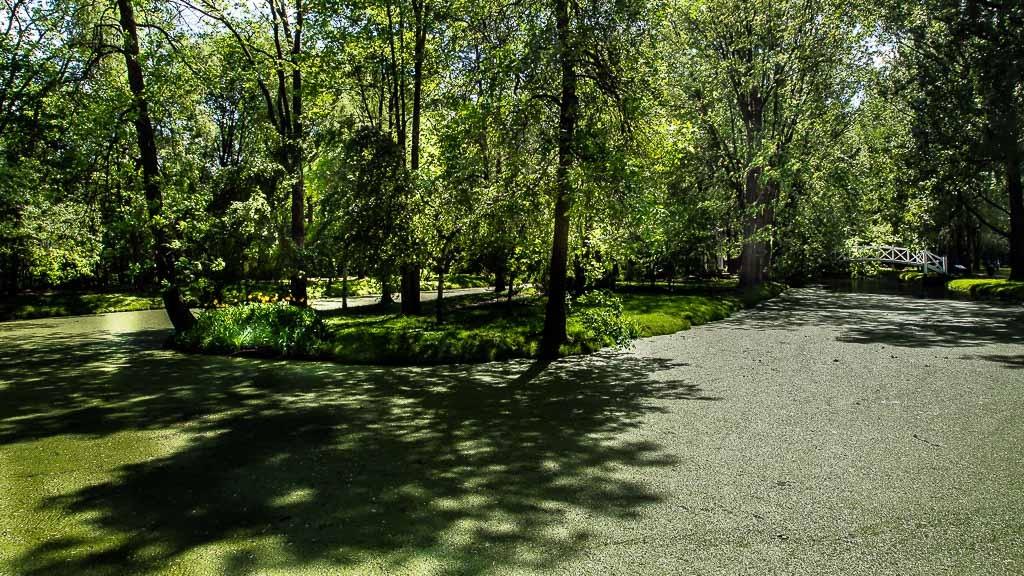 L'étang... Maizeret%207_zpsfu7msa9f