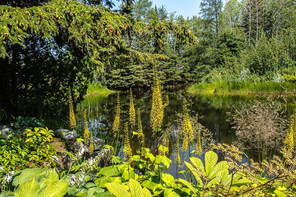 Les Jardins de Métis Jardins%20metis1_zpsg6tysvjt