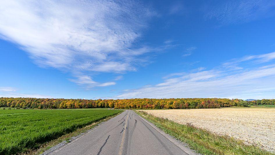 L'automne est arrivé... Mitan%2037_zpsuke3cjlu