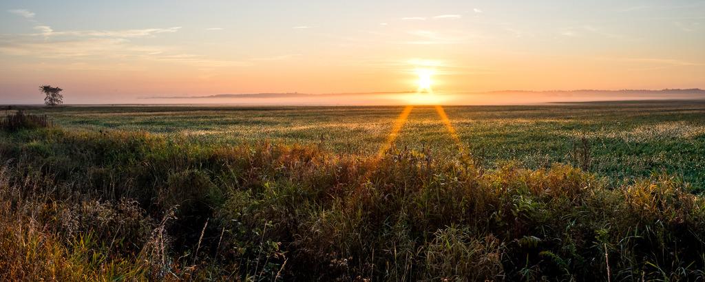 Ce matin au lever du soleil (Ajout +2) Mitan%2049a_zpseeaonk0i