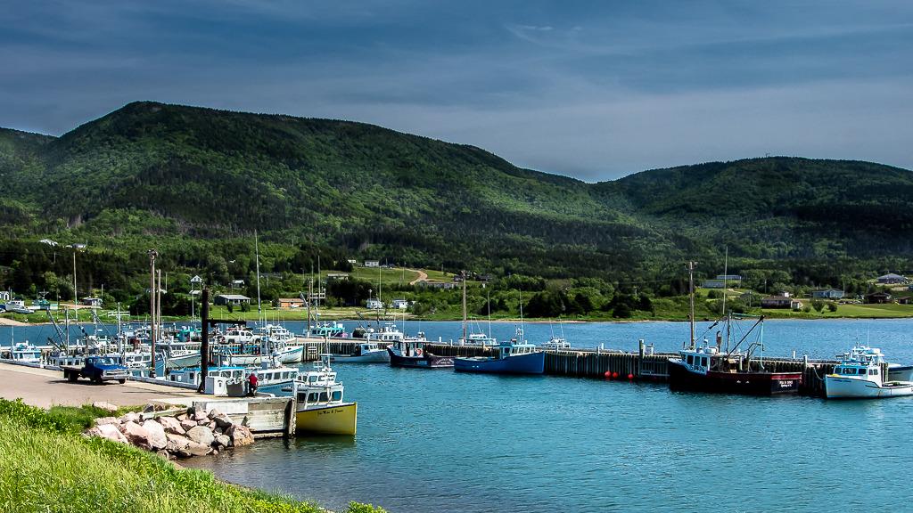Village de l'Île du Cap Breton (Nouvelle-Écosse) Nouv%20ecosse%20juillet%202015%20155_zpsphqjwzuc
