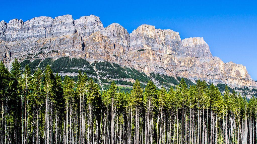 Balade dans les Rocheuses Alberta%2016_zpsfgbksac0