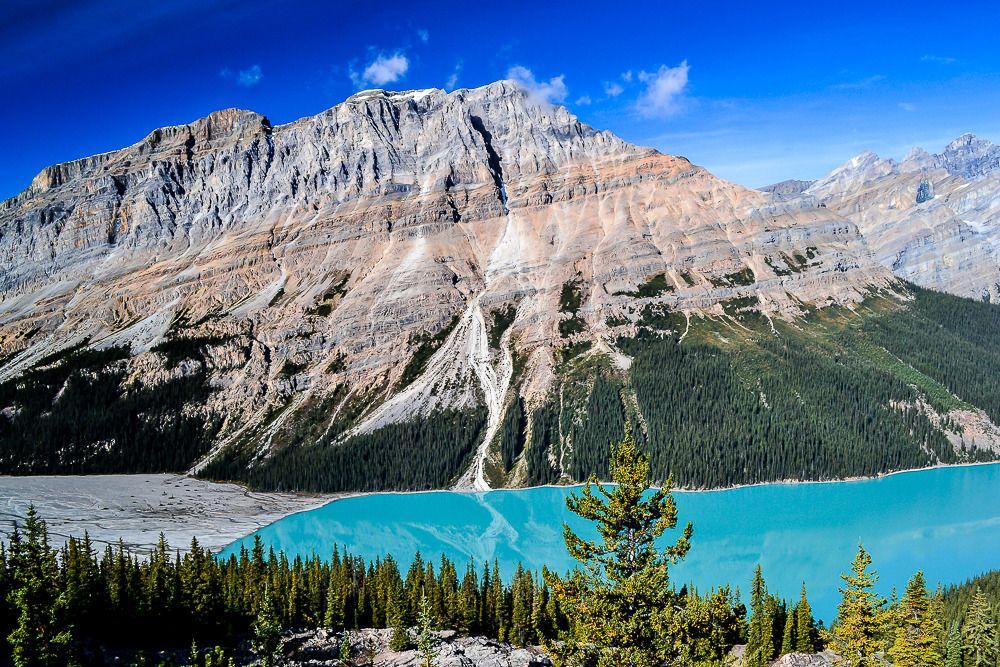 Le lac Peyto Rocheuses%209_zpsmjyrbfj2